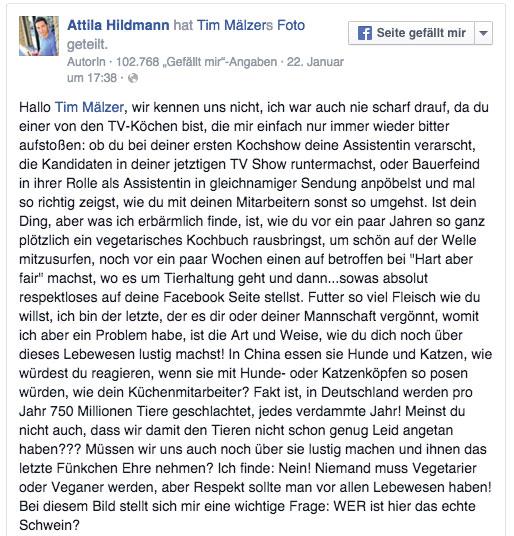 shitstorm-tim-maelzer-attila-hildmann